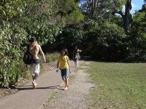 サーファーはポイントへ、コアラ探しのお散歩もまた楽し。