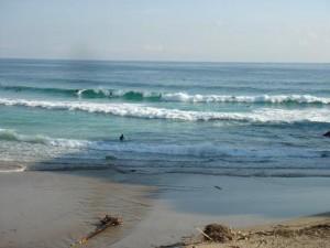 サーフィン楽しんでいるかたも協力してくれました