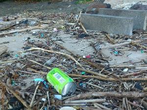 だけど浜にはゴミが打ち上げられてしまうの。。。